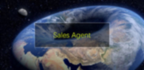 Sales Agent.jpg