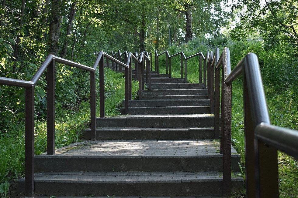 ladder-5401818_1280.jpg