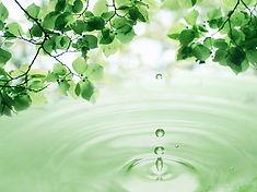 3d_leaves_and_water_drop-normal.jpg