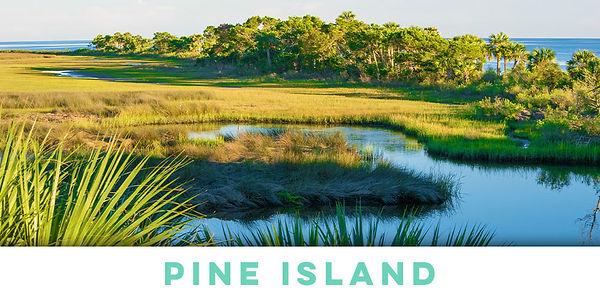 pine-island-1.jpg