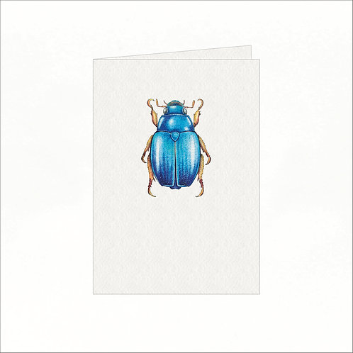 Greeting Card - Blue Australian Christmas Bug
