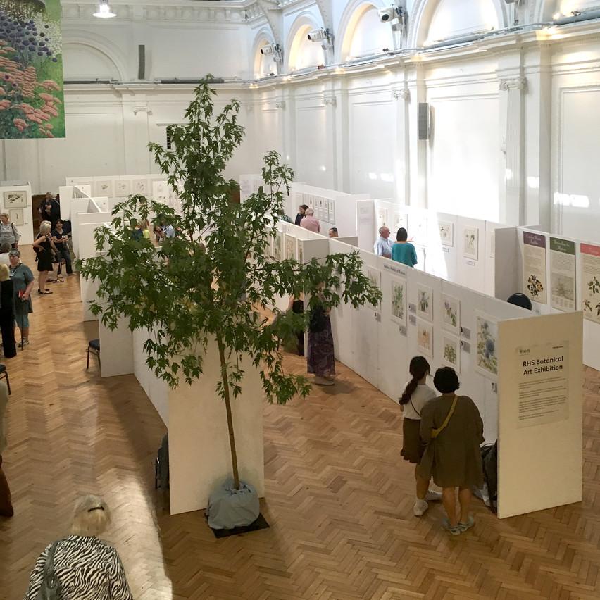 RHS London Plant and Art Fair 2018