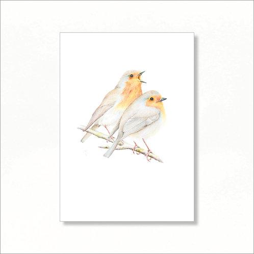 A4 Print - Robin Redbreasts