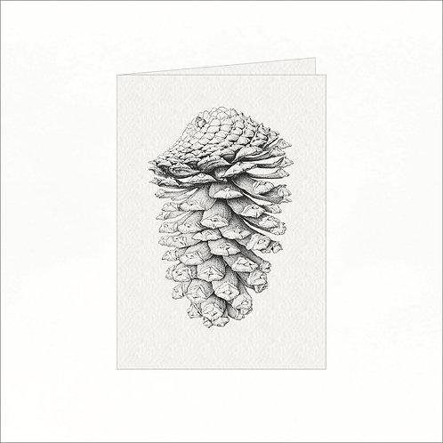 Greeting Card - Pine Cone