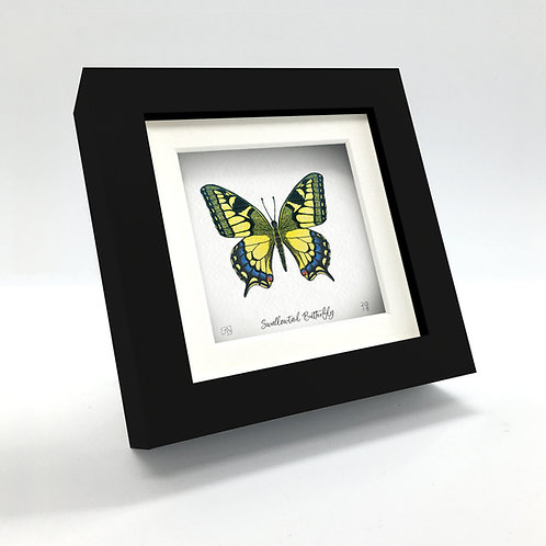 Miniature - Swallowtail Butterfly