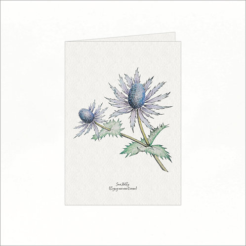 Greeting Card - Vintage Sea Holly