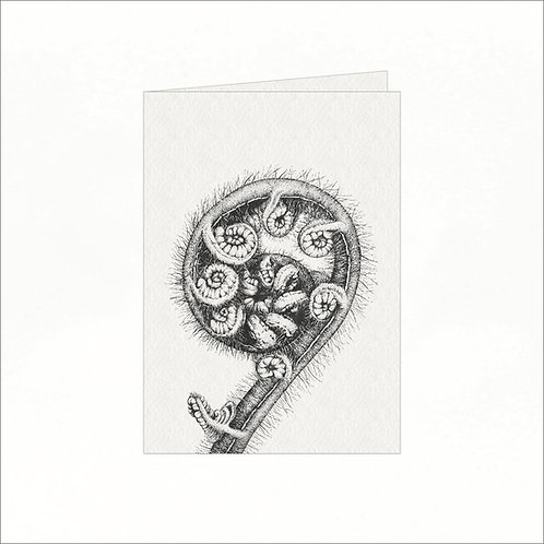 Greeting Card - Black Tree Fern (Cyathea medullaris)