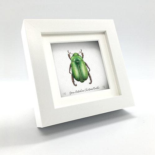 Miniature - Green Australian Christmas Beetle