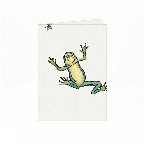 Greeting Card - Red Eyed Tree Frog & Fly