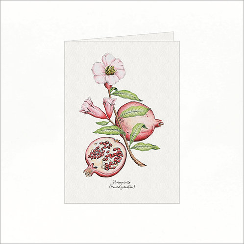 Greeting Card - Vintage Pomegranate