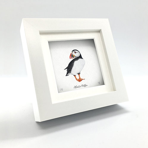Miniature - Atlantic Puffin