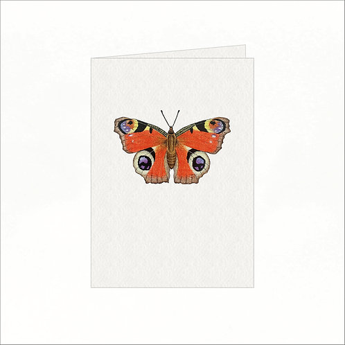 Greeting Card - Peacock Butterfly