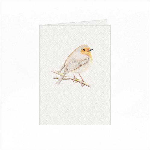 Greeting Card - Robin Redbreast