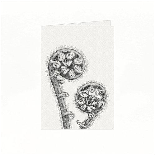 Greeting Card - Black Tree Ferns (Cyathea medullaris)