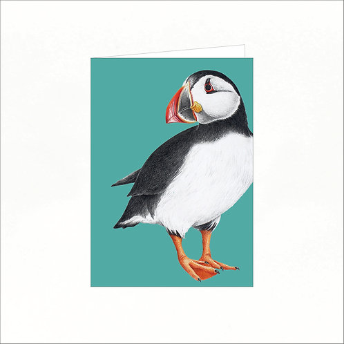 Greeting Card - Atlantic Puffin (colourful background)