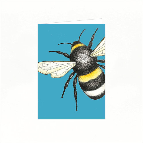 Greeting Card - Bumble Bee (colourful background)