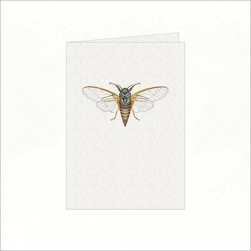 Greeting Card - New Forest Cicada