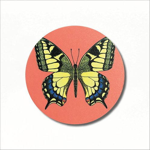 Coaster - Swallowtail Butterfly