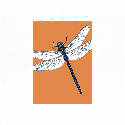 Greeting Card - Azure Hawker Dragonfly (colourful background)