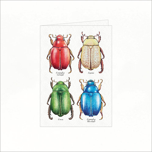Greeting Card - 4x Australian Christmas Bugs