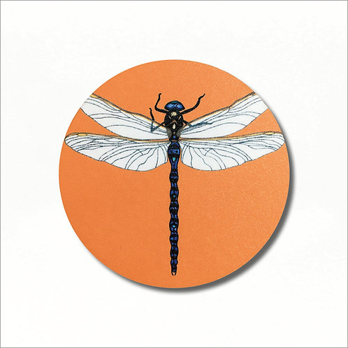 Coaster - Azure Hawker Dragonfly