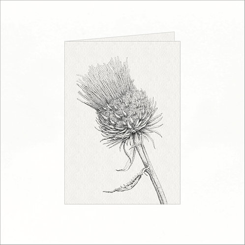 Greeting Card - Thistle