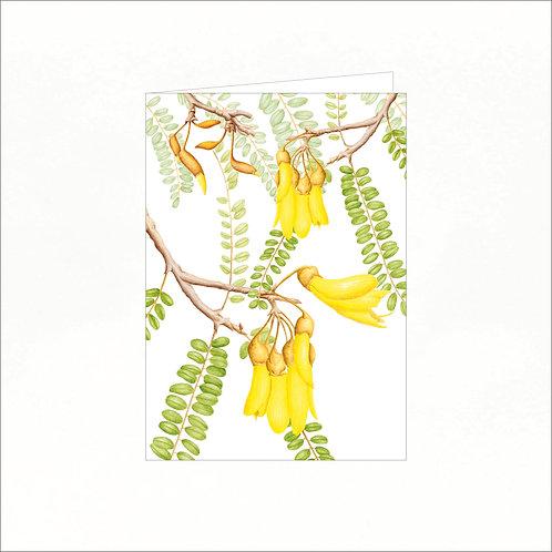 Greeting Card - Kowhai (Sophora microphylla)