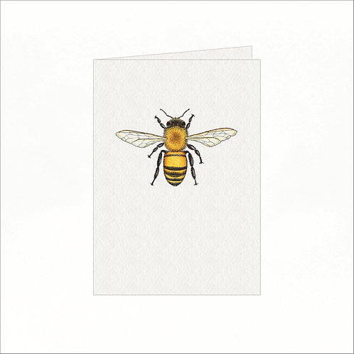 Greeting Card - Honey Bee (front on)
