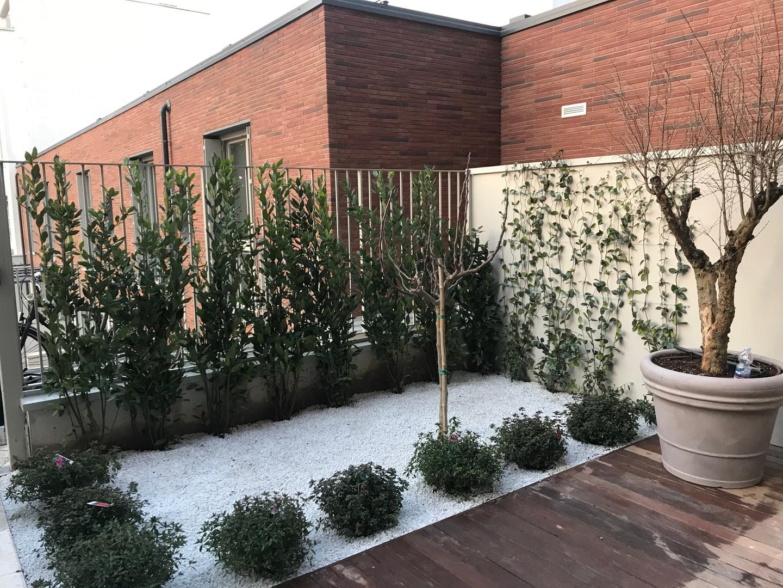 Giardino aromi e ornamentali