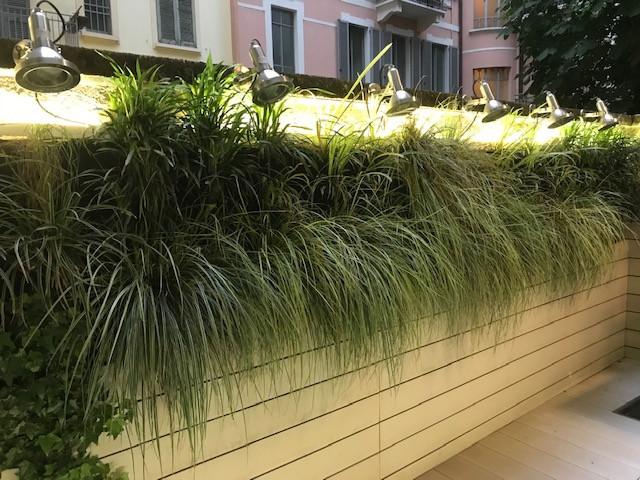 Parete Verde Milano