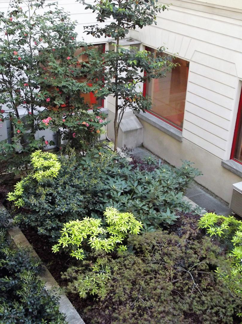 Servizi Giardinaggio Milano