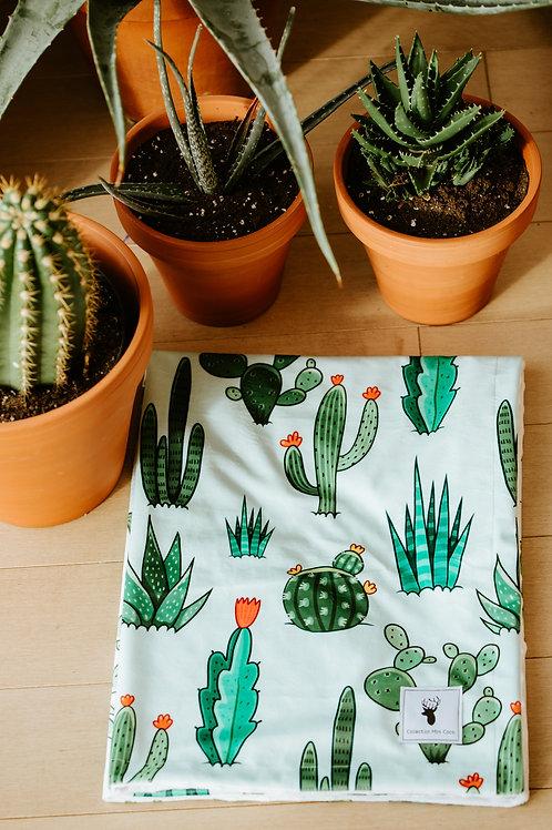 Accessoires   Accessories   Doudou cactus