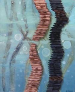 Fonds marin II