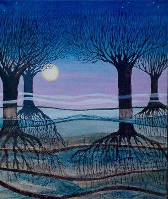 Pleine lune dans les bois