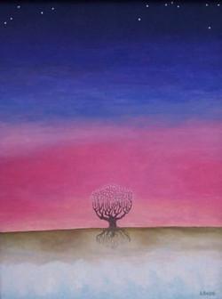 L'arbre et les étoiles