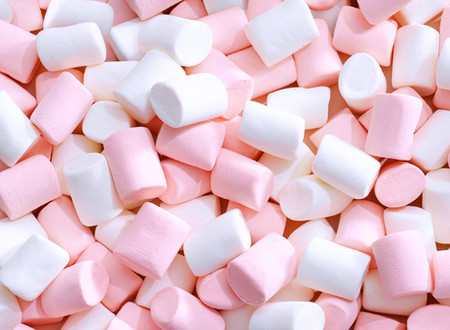 Belle's World - Marshmallow Test