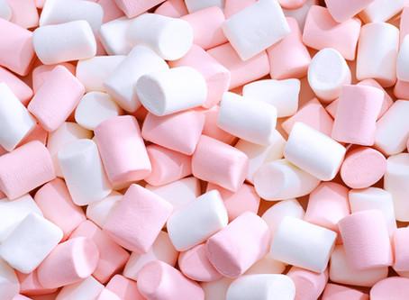 Der Marshmallow-Test und inwiefern er deinen Erfolg im Leben vorhersagt