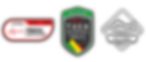 Logo_Taça_Portugal_Prancheta_1.png