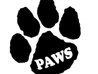PAWS University - Summer '19