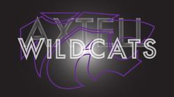 layered-axtell-wildcat