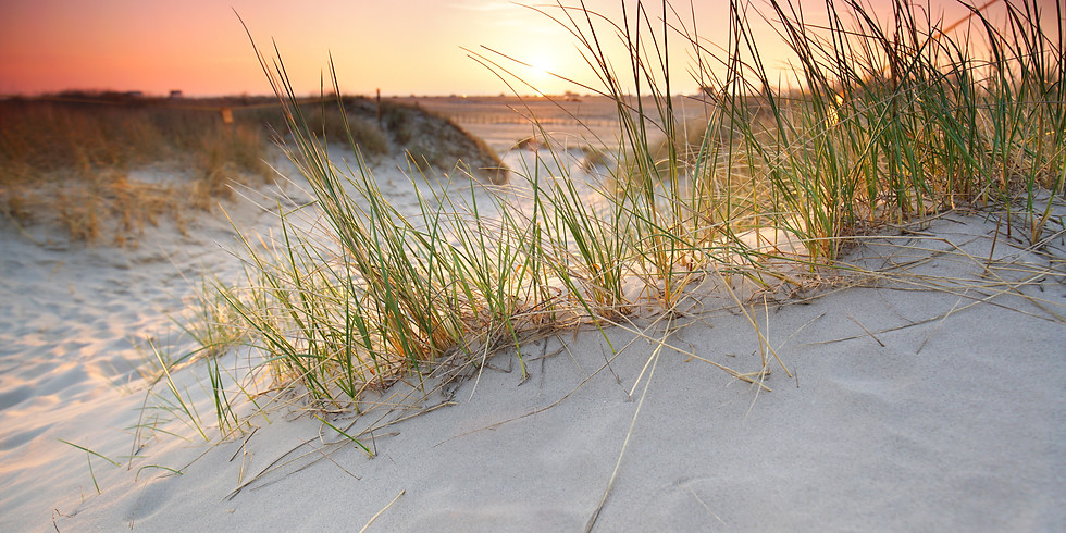 Ladies Beach Retreat