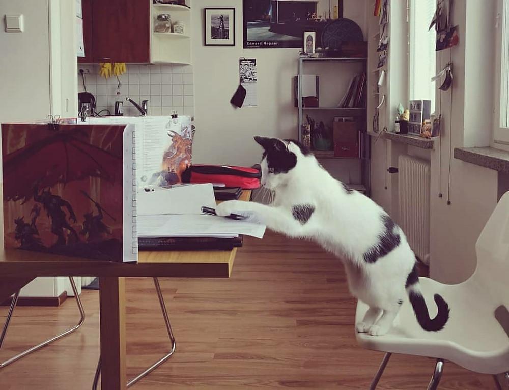 Kuvituskuva. Mustavalkoinen kissa on hypännyt pelinvetäjän paikalle valkoiselle tuolille.