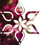 Business Card Flower Borderless.png