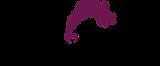 Novbahar Logo.png