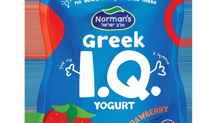 Norman's I.Q. Squeezable Strawberry 3.5 Oz.
