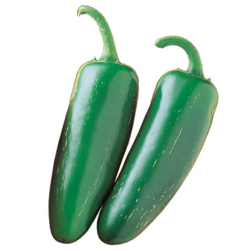 Jalapeno Pepper (order by piece, sold by weight)