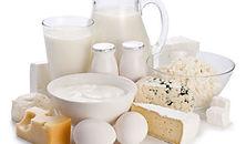 dairy-eggs.jpg