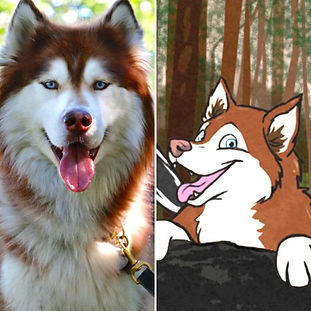 Children's book, The Adventures of Sky & Moochi, Moochi Siberian husky, husky Moochi,