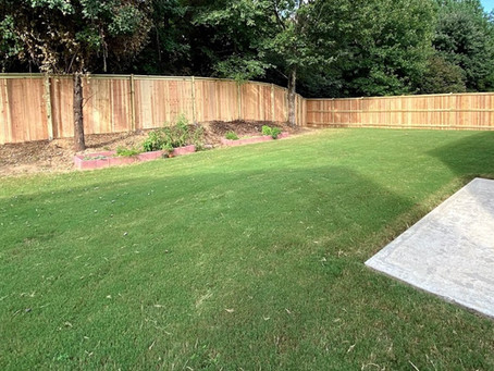 FIVE QUESTIONS TO ASK BEFORE YOU INSTALL A NEW FENCE