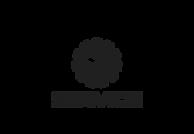 nikola_service_logo-9f9bad96f2f7c29d12f5